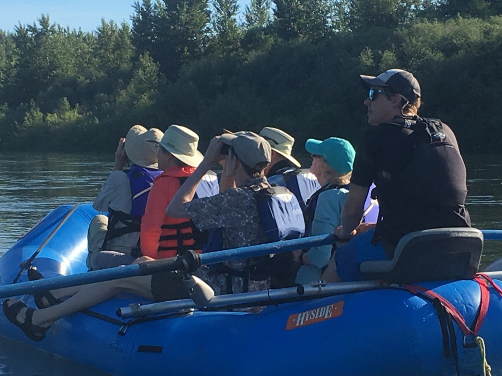 Spotting nesting osprey along the Willamette River during a Greenbelt 'Breakfast with the Birds' float led by Cascadia Expeditions.