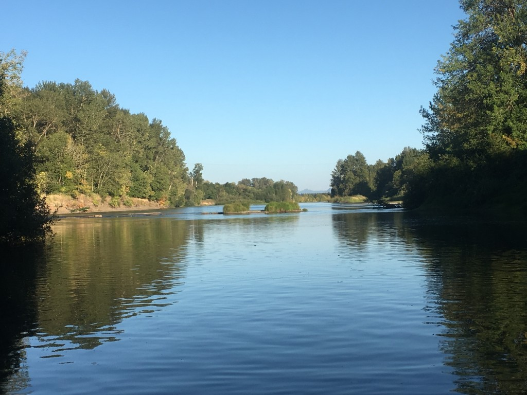 The confluence of the Mary's and Willamette Rivers tends to also merge trash.