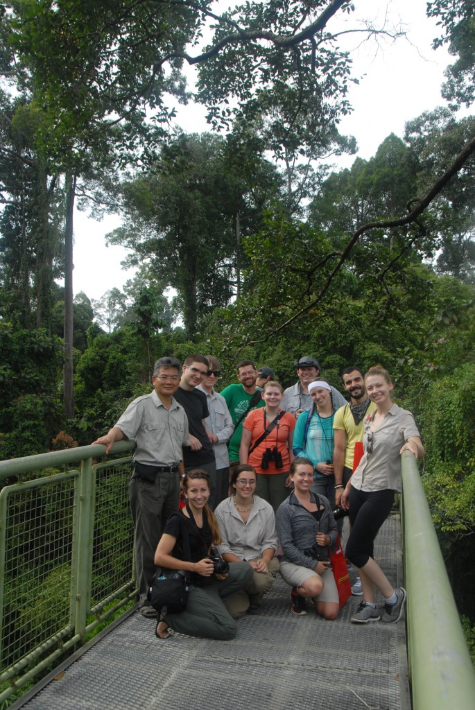 Photo 4: Borneo Class 4. Here, the class is gathered on the magnificent canopy walk conceived and developed by Dr. Robert Ong, at left, our guide at the Rainforest Discovery Center in Sandakan. Through the activities of the Center, thousands of visitors every year are exposed to the wonders of the rainforest.