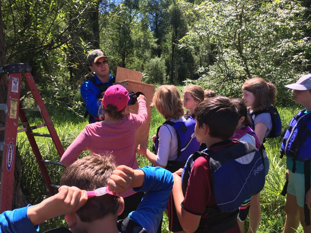 Kids get to help install duck nesting boxes along the Willamette River.