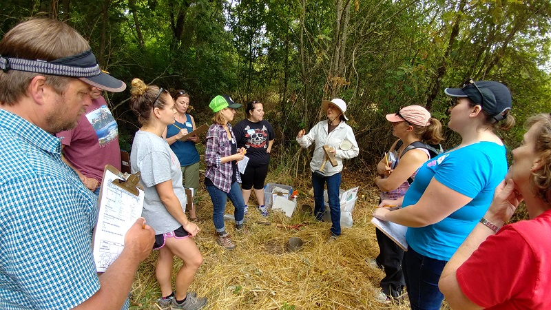Teachers Weave Connections- From Food Webs to Baskets