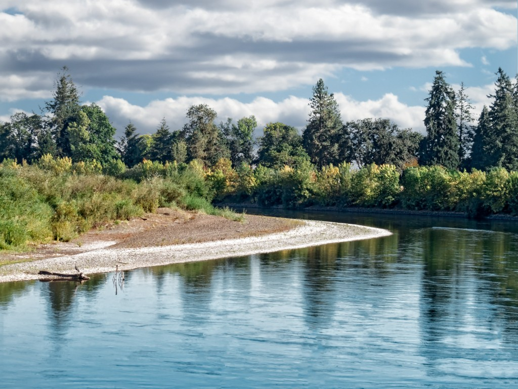When the river level drops enough, it's possible to walk right along the bank of the Willamette.